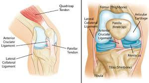 knee pain treatment, knee pain physical therapy